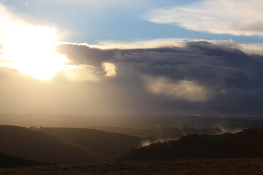 I love the steam rising from the hillside as the morning sun dries the rain soaked earth