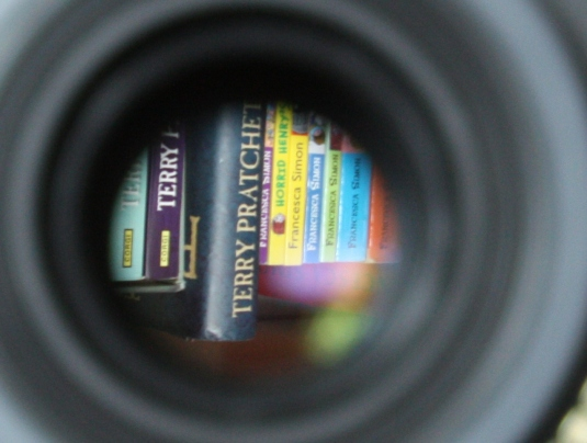 Cropped image of the one above showing books, upside down inside the lens!
